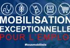 Mobilisation emploi MLIV